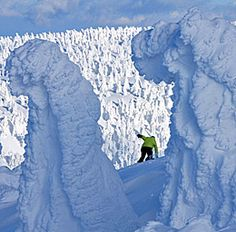 Ice Monster at Mt. Hakkoda in Aomori city,Japan.