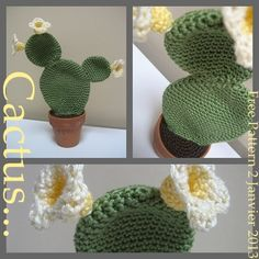 FREE PATTERN ~ WRITTEN IN FRENCH ~ cactus-crochet ~