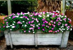 a wooden planter filled with beautiful impatiens