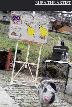 Buba the Artist - http://rollinghedgehog.com/buba-the-artist/