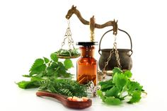 "Herbs and extracts have been used for centuries as an alternative to conventional modern medicine. Natural antibiotics, or in other words, mother natures ""farmacy,"" have provided countless cures an. Holistic Healing, Natural Healing, Au Natural, Wellness Tips, Health And Wellness, Home Remedies, Natural Remedies, Natural Antibiotics, Naturopathy"