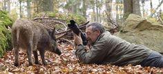 dieren fotograaf