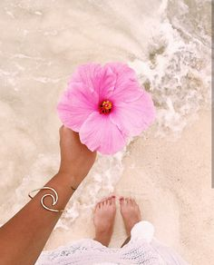 Not only is Hibiscus the famous Hawaiian state flower, it's widely known to help restrict hair fall as a result of its unique genetic make-up. Beach Photography, Mobile Photography, Nature Photography, Travel Photography, Ocean Wallpaper, Summer Wallpaper, Tropical Vibes, Tropical Flowers, Pretty In Pink