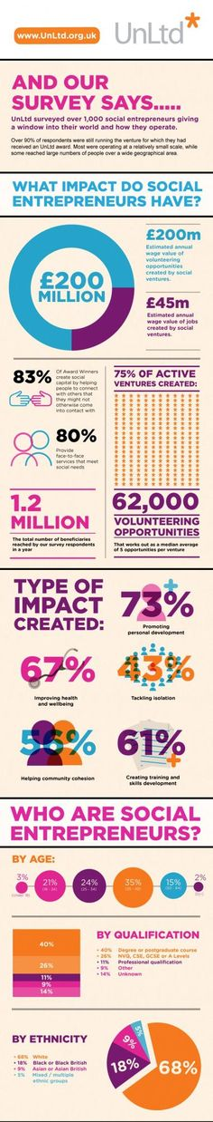 A window into the social entrepreneur's world [INFOGRAPHIC]