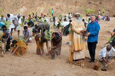 Dans une région aride de l'Inde, Sadghuru, un maître spirituel, est en voie de réaliser un pari fou d'ici à 2015, grâce à des milliers de bénévoles et l'appui de la Fondation Yves Rocher : planter 114 millions d'arbres.