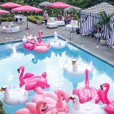 It's the 1st day of June!! Boy would I love to be relaxing on one of these floaties!! Love all the pink, black and white!  Happy June! ☀️ Via @marcyblum