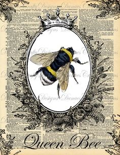 Queen Bee - Vintage Bumble Bee with Crown Collage on Dictionary Print Background