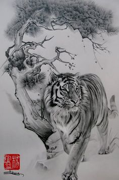 Inspiration for Tiger Tattoo to mark trip to South Korea (idea inspired by mink blanket I was given in Korea)