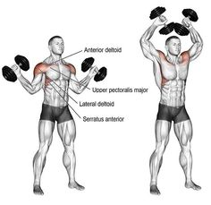 Dumbbell w-press exercise instructions and video dumbbellworkout Dumbbell w-press An isolation exercise Target muscle Anterior Deltoid Synergists Lateral Deltoid Upper Pectoralis Major Supraspinatus Serratus Anterior and Middle and Lower Trapezius # Fitness Workouts, Weight Training Workouts, Gym Workout Tips, At Home Workouts, Fitness Tips, Fitness Gear, Fitness Nutrition, Workout Trainer, Free Workout