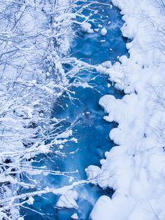 Blue river - Biei, Hokkaido, Japan
