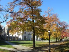Princeton early fall