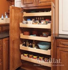 Tall Utility Cabinet with Roll-Out Trays - Masterpiece® Accessories - Merillat® cabinetry. This tall pantry cabinet with rollout shelves means even the back row is always easy to reach.