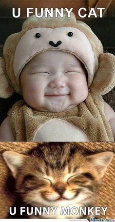 Funny Cuteness