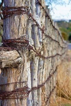 Enthralling Fence ideas for yard,Modern fence gate hardware and Front yard fence australia. Country Fences, Rustic Fence, Pallet Fence, Country Farm, Country Life, Fence Stain, Country Roads, Front Yard Fence, Farm Fence