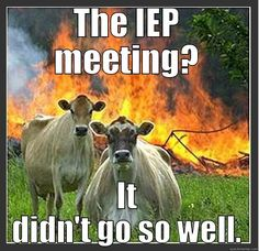 iep meeting funny - Google Search