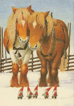 the Swedish Tomte, and there friends, give them some kind of food if you have a barn or have Swedish in you.
