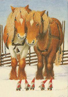 ginger ponies