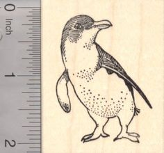 Little Penguin Rubber Stamp, Birds of Australia and New Zealand
