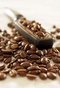 Grating Coffee Beans - cafes coffee aroma ...