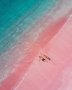 Is this a beach with pink sand or am I just dreaming? No it's not a dream and in Komodo Islands it's pretty much real 😍 Tag a friend who need to see this 🤩 - 📷: 👌 📍: Komodo Island, Bali, Indonesia - Pink Sand Beach Bahamas, The Beach, Beach Fun, Pink Sands Bahamas, Beach Relax, Pink Ocean, Komodo National Park, National Parks, Places To Travel