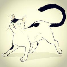 #dailydrawing #drawing #catdrawing #cat #dailydrawings #drawings #catdrawings #cats #냥그림 #냥스타그램 #캣스타그램 #catstagram #neko #고양이 #猫 #ねこ #gato #고양이그림 #instacat #catsta #catsofinstagram #하루한장#취미로고양이그리는아줌마