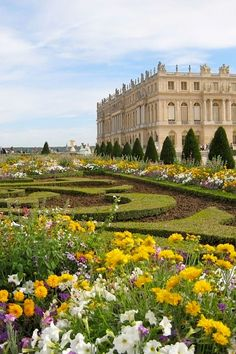 sighsopretty:    ysvoice:    | ♕ | Summer garden at Versailles  | via Gardens & Parks    I HAVE BEEN THERE!!!!!!!!!!!!!!!!!! HAPPY TIMES!