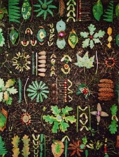Green Art Blog...nature reordered by Tim Pugh
