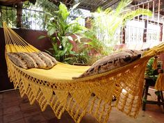 love this hammock!!-->One Color Double Hammock Handmade Natural Cotton by hamanica, $64.00