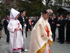Japão Outro Lado | Noticias, dia a dia, costumes, eventos, curiosidades, desastres naturais, viver e sobreviver as crises no japão de hoje..