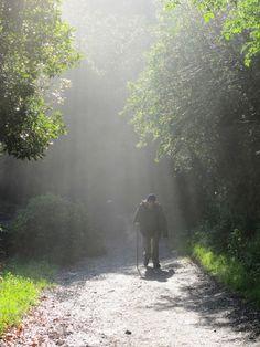 E no caminho de Santiago de Compostela, foto por Camila Stecca, do vovô dela.