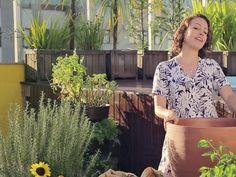 Minha Horta Desafio #2: Quero um canteiro com flores - YouTube