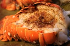 A Feast for the Eyes: Easy Broiled Lobster!