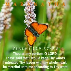 #Psalms 119:57-64 (KJV)  Thou art my portion, O LORD: I have said that I would keep thy words. I intreated thy favour with my whole heart: be merciful unto me according to thy word. I thought on my ways, and turned my feet unto thy testimonies. I made haste, and delayed not to keep thy commandments. The bands of the wicked have robbed me: but I have not forgotten thy law. At midnight I will rise to give thanks unto thee because of thy righteous judgments.  #MARANATHA