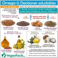 Infografías | Nutrición Vegana – Dieta Vegana, Alimentación y Veganismo - Todo lo que debes saber para adoptar una dieta vegana, vegetal o 100% vegetariana. Frutas, verduras, hortalizas, legumbres, cereales, frutos secos, proteínas, vitaminas...