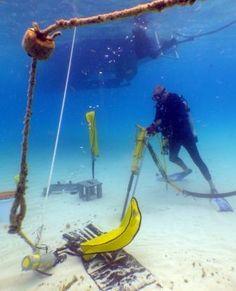 Mooring buoys in the Florida Keys National Marine Sanctuary help keep the coral healthy. #Florida #Restoration