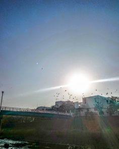 今日も秋晴れ() #秋 #秋晴れ #空 #青空 #快晴 #太陽 #風景 #ダレカニミセタイソラ #写真好きな人と繋がりたい #空好きな人と繋がりたい #autumn #sun #sunshine #sunnyday #instagram #japan #landscape #sky #bluesky #clearsky  #skylovers #skyporn #clouds #igers #igersjp #sky_captures #ptk_sky #instasky #photooftheday