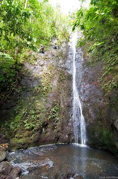 Manoa Falls, Oahu, HI