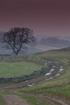 Yorkshire. England ~ Sherlock Holmes, the Moors, all kinds of exciting & mysterious images come to my mind when I think of Yorkshire. I've always dreamed of visiting there, & preferably staying in a spooky old mansion, or better yet a castle!  ;)