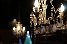 Wedding reception chandeliers. Wedding details. Exquisite color and details for this wedding reception!