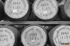 Il whisky riposa nelle botti di rovere - Tullibardine Distillery