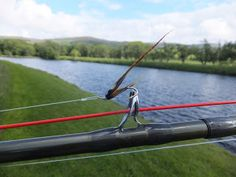 On Saturday, I found myself on the majestic Tulchan C beat of the River Spey. Fishing Uk, Fishing Techniques, Salmon Fishing, River, Rivers