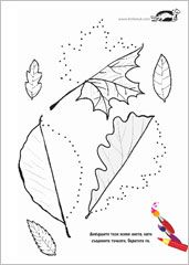 Dorisuvay autumn leaves