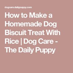 How to Make a Homemade Dog Biscuit Treat With Rice | Dog Care - The Daily Puppy