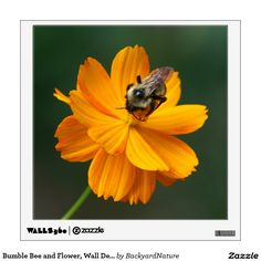 Bumble Bee and Flower, Wall Decal. Wall Sticker