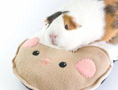 Guinea Pig Cushion