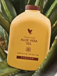 dont kill your skin while curing acne Aloe Vera Gel Forever, Forever Living Aloe Vera, Forever Aloe, Healthy Banana Bread, Healthy Pizza, Healthy Dinner Recipes, Forever Business, On The Go Snacks, Food Charts
