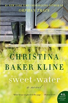 Sweet Water: A Novel by Christina Baker Kline, http://www.amazon.com/dp/B003P2W1JI/ref=cm_sw_r_pi_dp_DSYWtb15WG0Z4