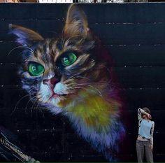 Street Art @GoogleStreetArt shared New Street Art by 'Caktus & Maria' in Italy via Twitter #cat #art #mural #streetart ♥༺❤༻♥