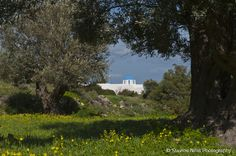 The Monastery of Saint Andrea @ Paros island , Greece ! Paros Island, Golf Courses, Greece, Greece Country