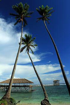 Cloud Nine Boardwalk, General Luna, Siargao Island, Surigao del Norte, Philippines